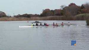WebBuzz du 14/11/2014: Une course d'aviron qui se transforme en bataille navale-A-rowing race turns into naval battle